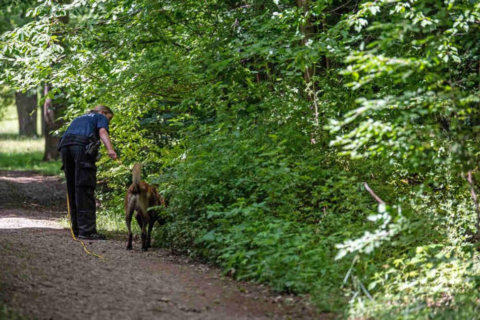 Die Polizei sucht nach dem Täter und ist am Tatort in Obergiesing sichtbar präsent.