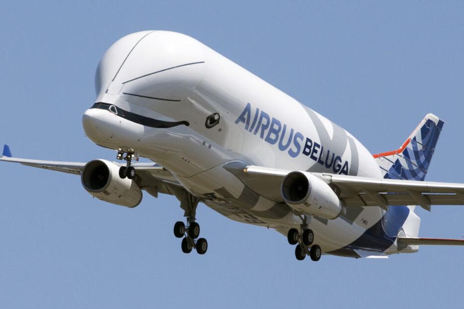 Der Airbus BelugaXL bereitet sich auf die Landung auf dem Flughafen Toulouse-Blagnac vor.