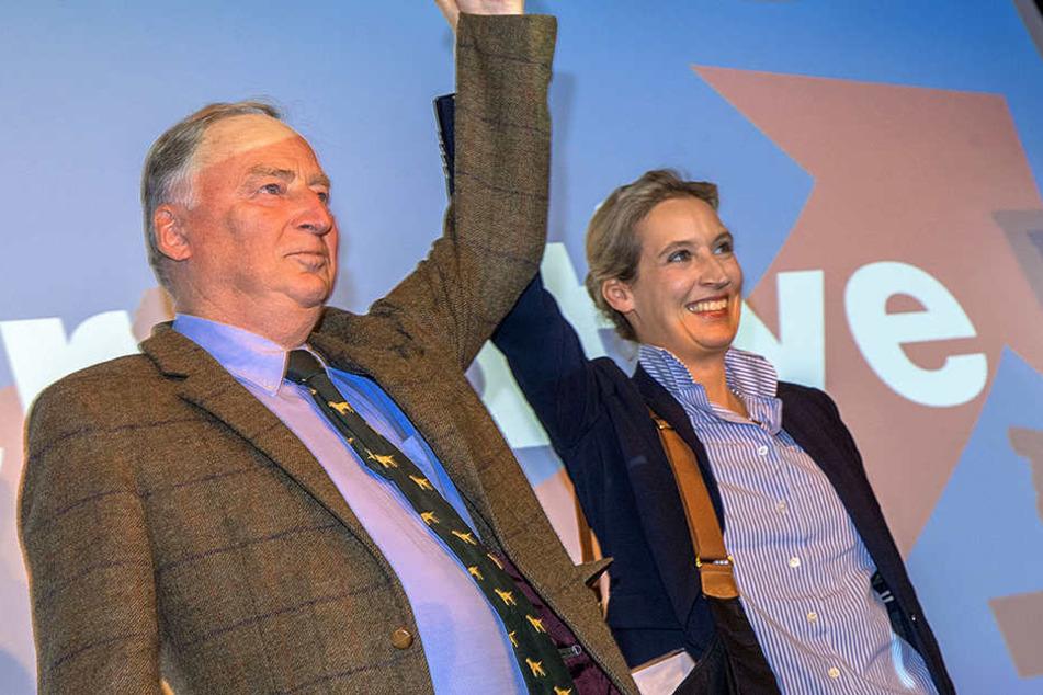 Grund zur Freude für Alexander Gauland und Alice Weidel: Wären am Sonntag in Cottbus Landtagswahlen würde die AfD auf 29 Prozent kommen.