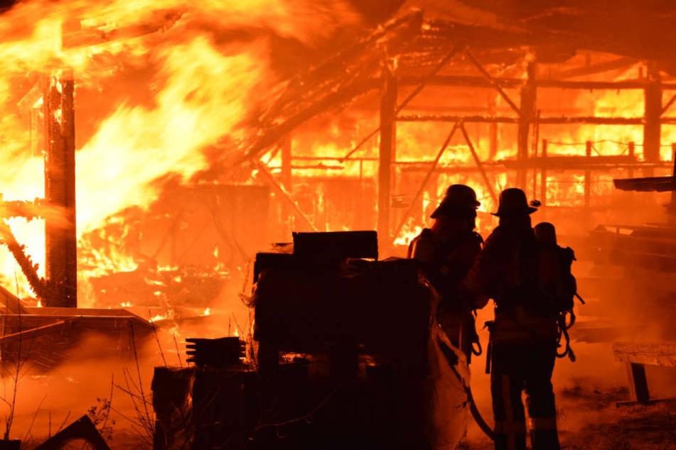 Um den Flammen Herr zu werden, rückte die Feuerwehr mit einem Großaufgebot an.