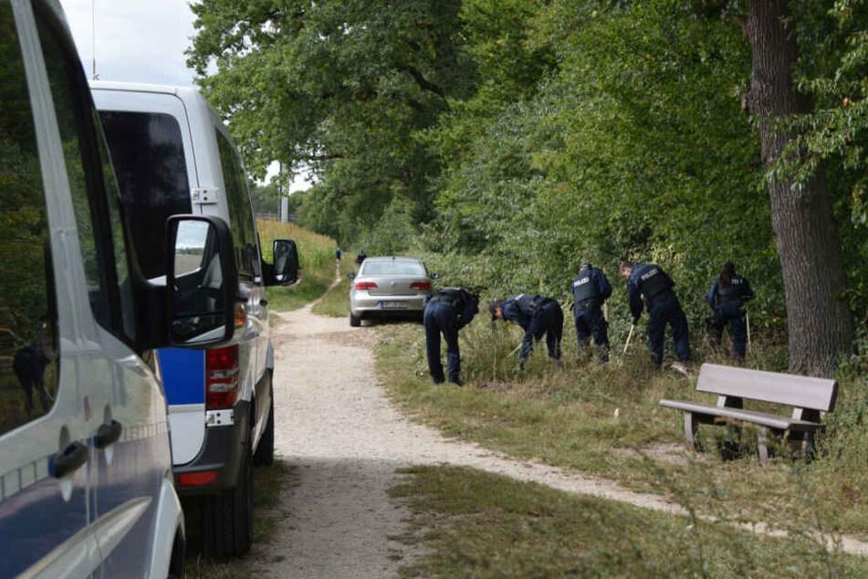 Die Knochen des Säuglings waren im Jahr 2017 im Viernheimer Wald gefunden.