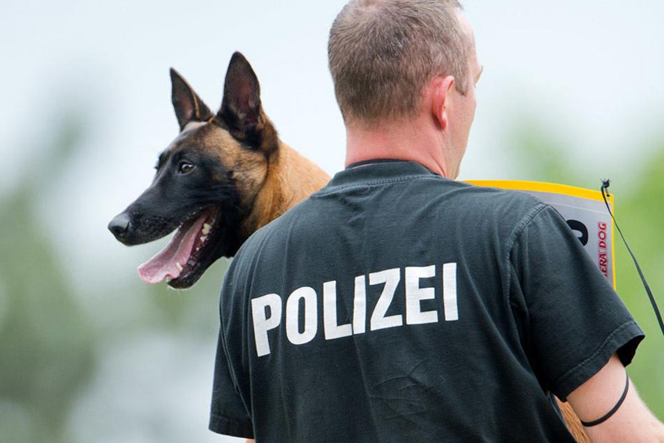 Ein Polizeihund musste die Gaffer zurückhalten. (Symbolbild)