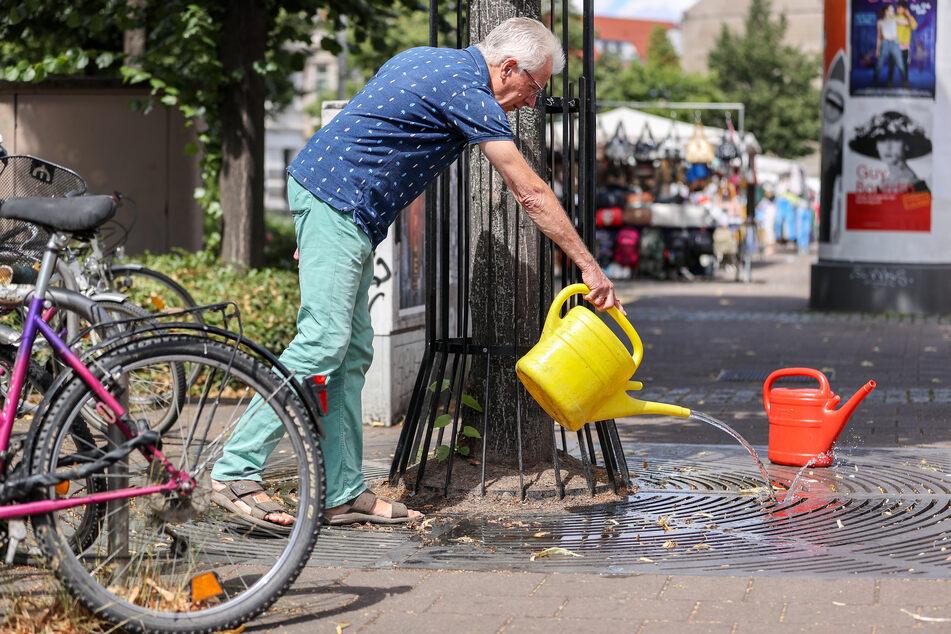 Uwe Buckendahl gießt einen Straßenbaum auf dem Lindenauer Markt.