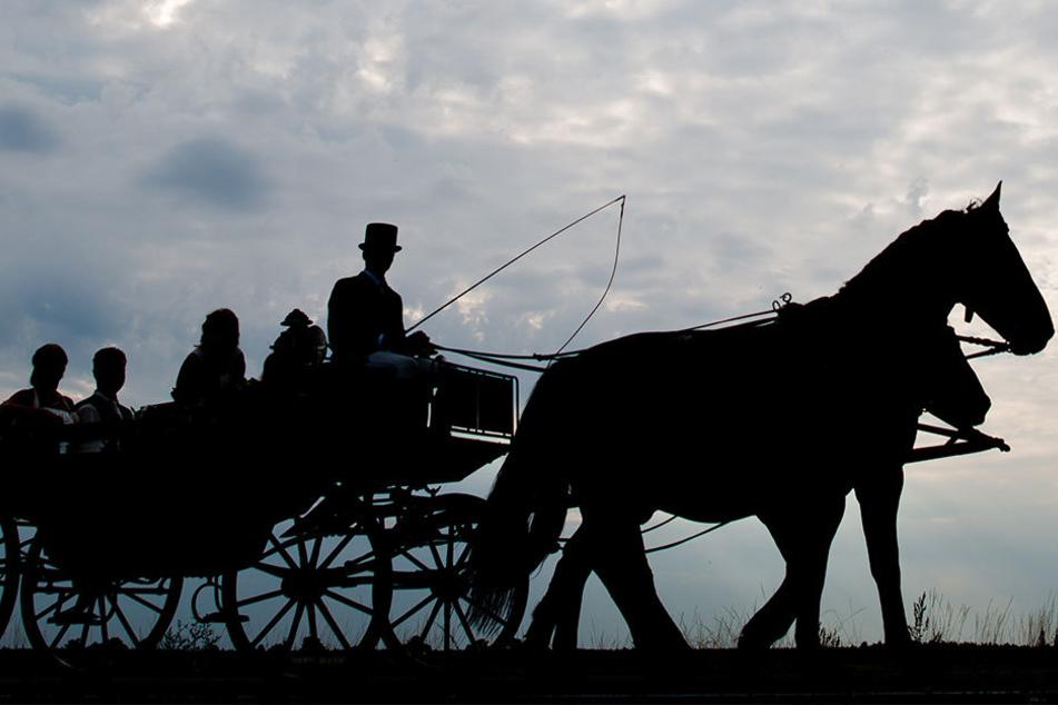 Die Zugstange war gebrochen, da gingen die Pferde durch. (Symbolbild)