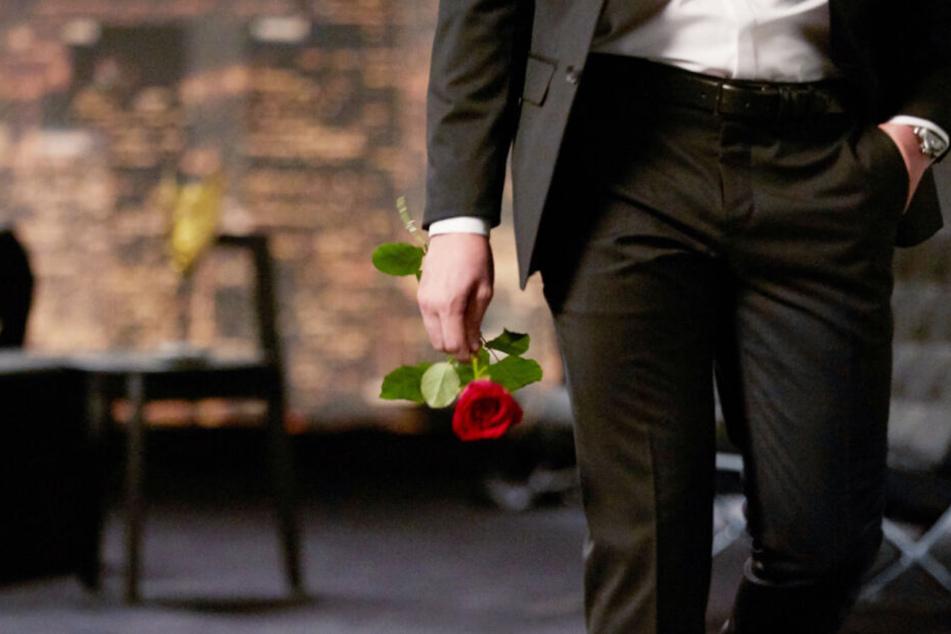Auch 2020 werden wieder Rosen bei RTL verteilt (Archivbild).