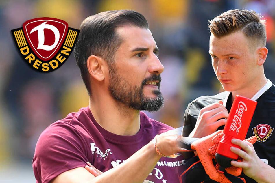 Dynamo-Hammer: Fiel schmeißt Schubert aus dem Kader!