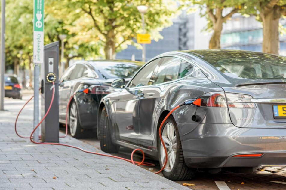 Tesla-Autos hängen an Ladesäulen. (Symbolbild)