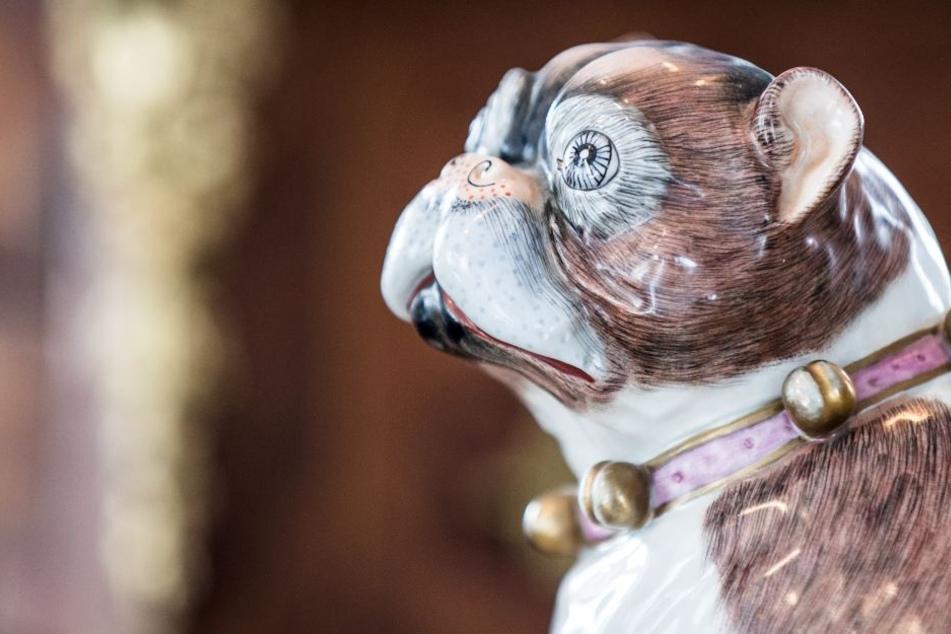 Es werden mehr als 60 edle Exemplare der Hunderasse präsentiert.
