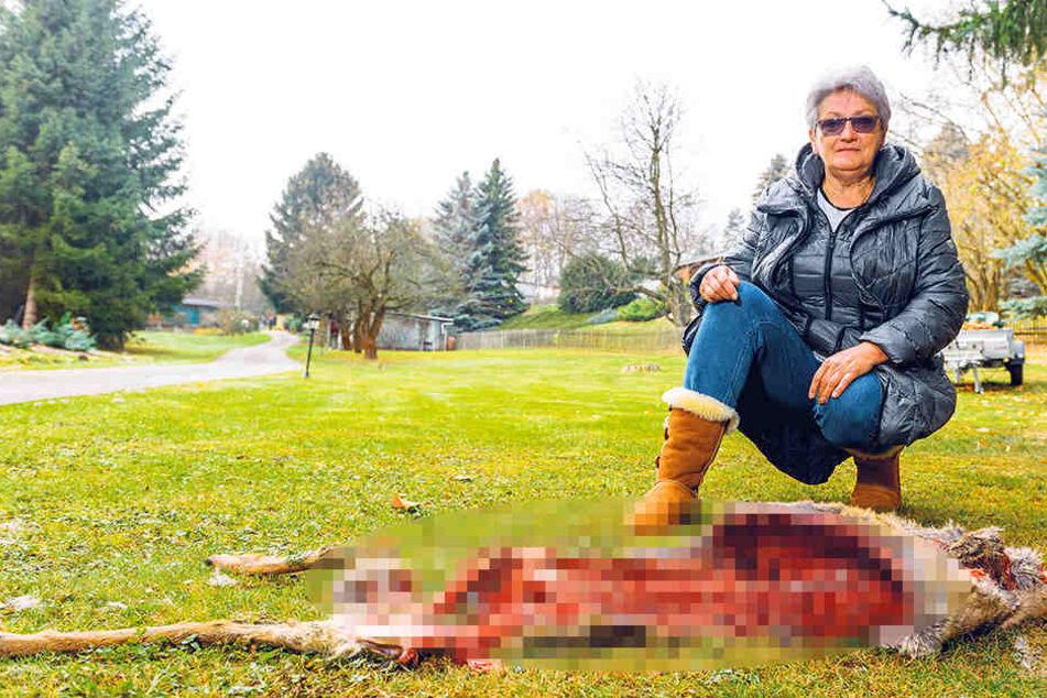 Karin Wündrich (67) fand auf ihrem Grundstück dieses völlig zerfetzte Reh.