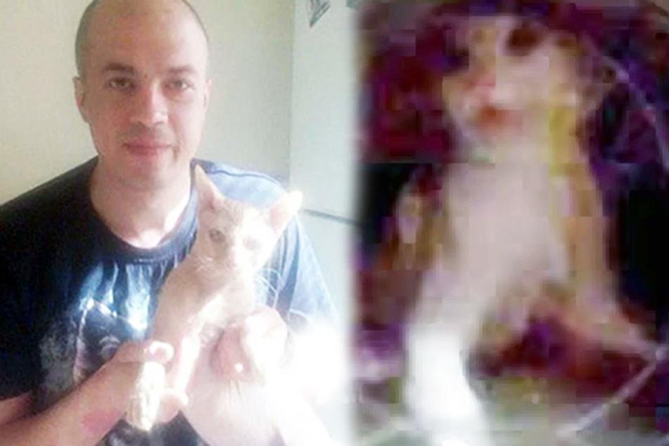 """Ivan (37) tötete Kater """"Ryzhik"""", weil er die Trennung seiner Freundin nicht verkraftete."""