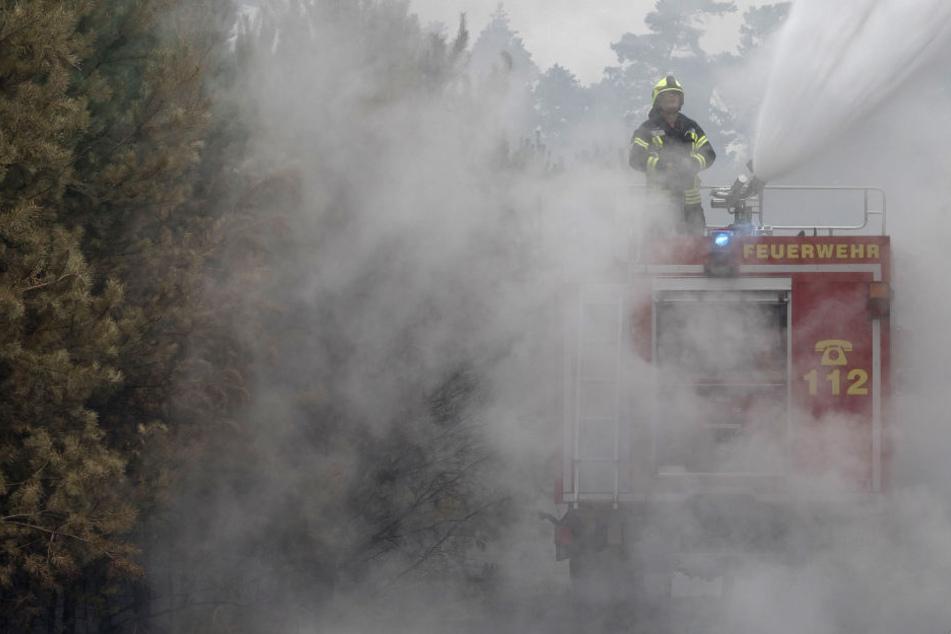 Größter Waldbrand In Deutschland