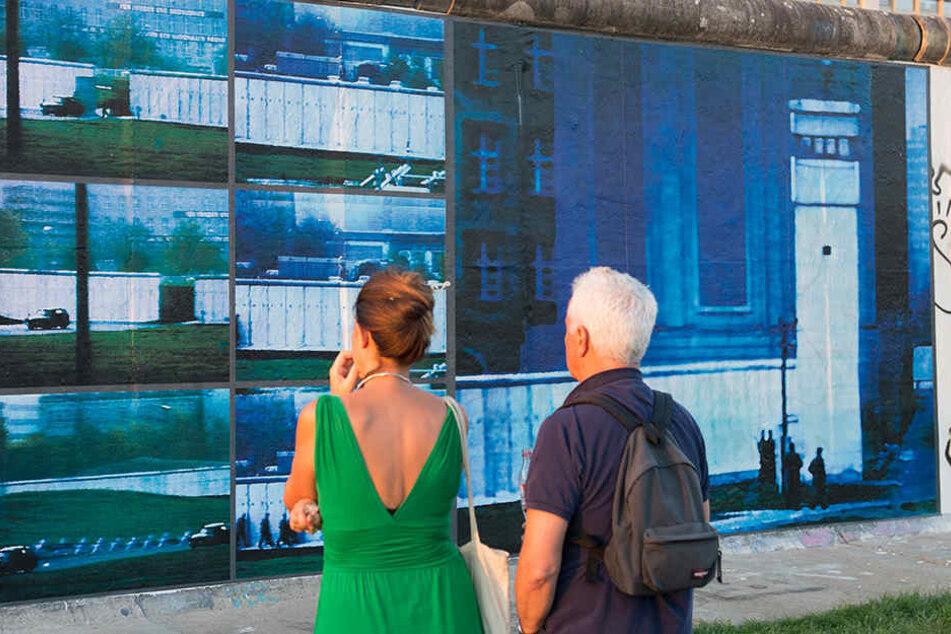 Bis Anfang November können Besucher die Kunstwerke an der Mauer bestaunen.