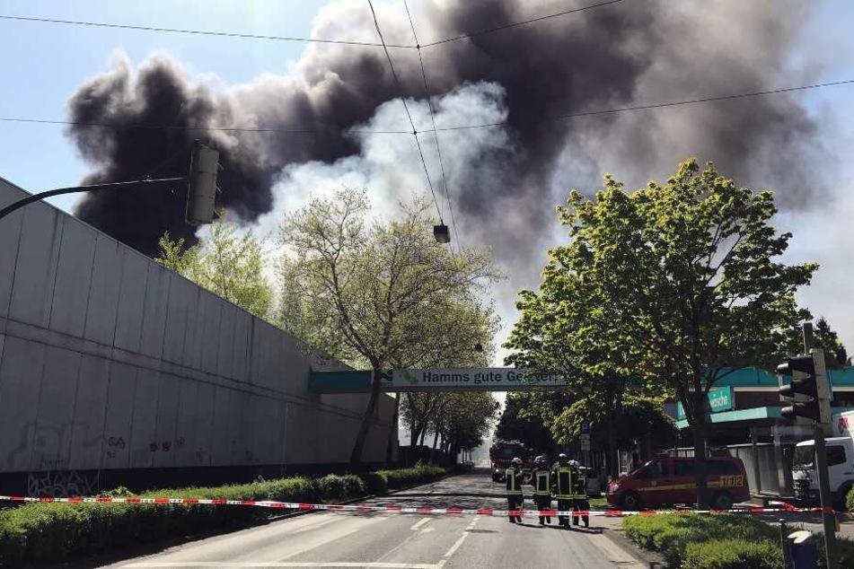 Eine riesige Rauchsäule stieg über der Lagerhalle empor.