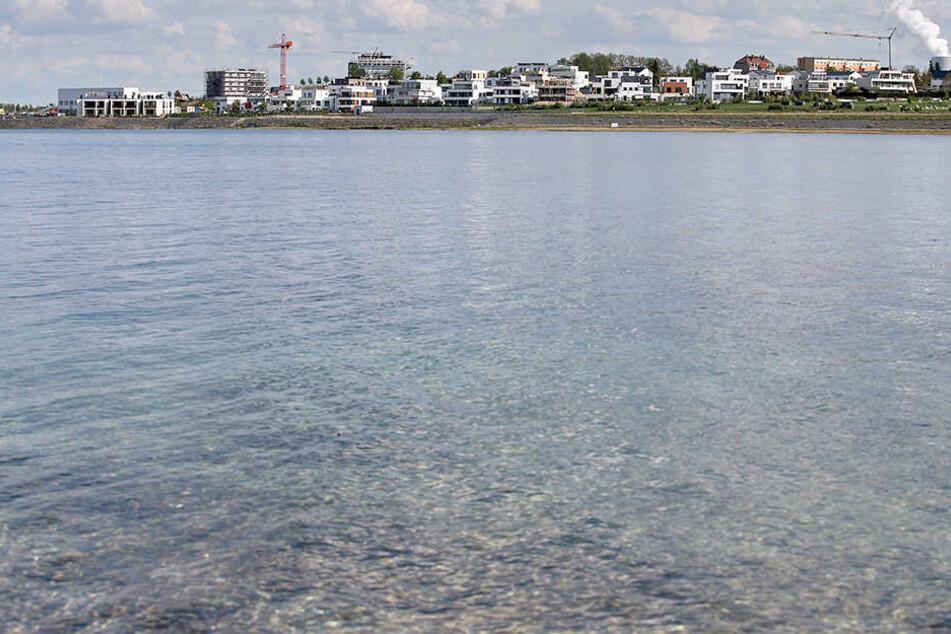 Die Leiche der Frau wurde am 23. September von einer Spaziergängerin am Zwenkauer See gefunden. (Archivbild)