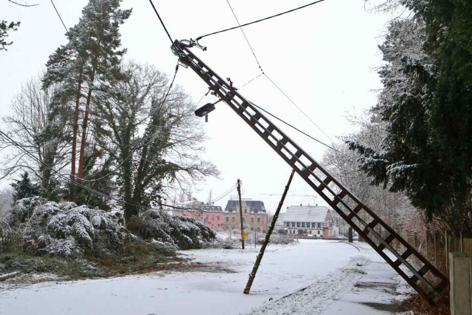 Zahlreiche Leitungen waren durch umgestürzte oder abgebrochene Bäume beschädigt.