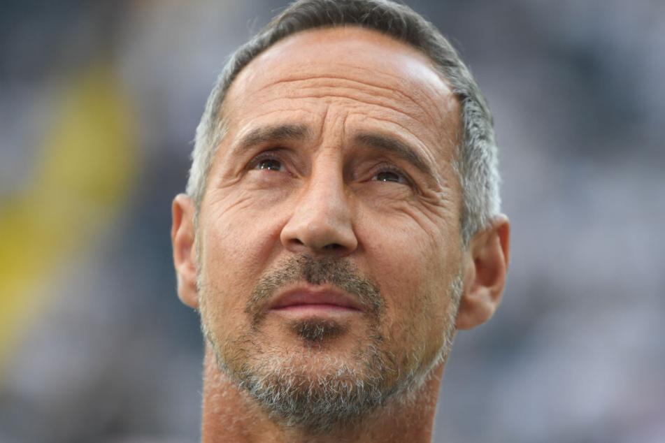 Adi Hütter geht in seine zweite Bundesliga-Saison als Chef-Coach von Eintracht Frankfurt.