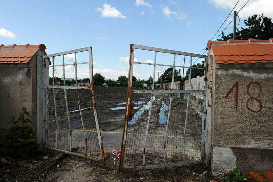Es gibt viel zu tun: Im Ostragehege würde Dynamo gern ein nagelneues Trainingsgelände  bauen.