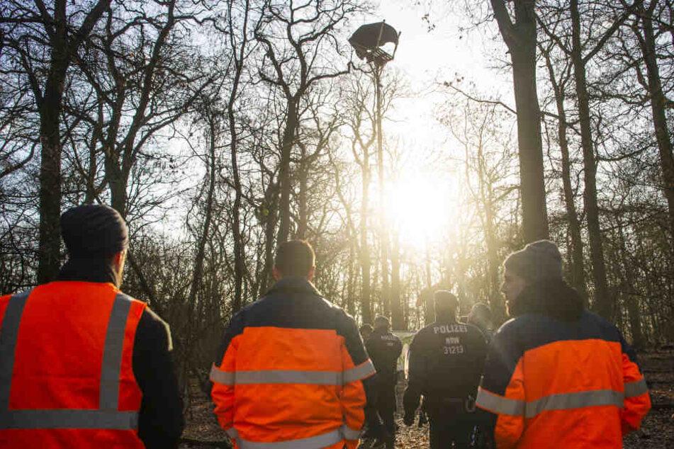 Die Polizei wird den Hambacher Forst vorerst nicht räumen.