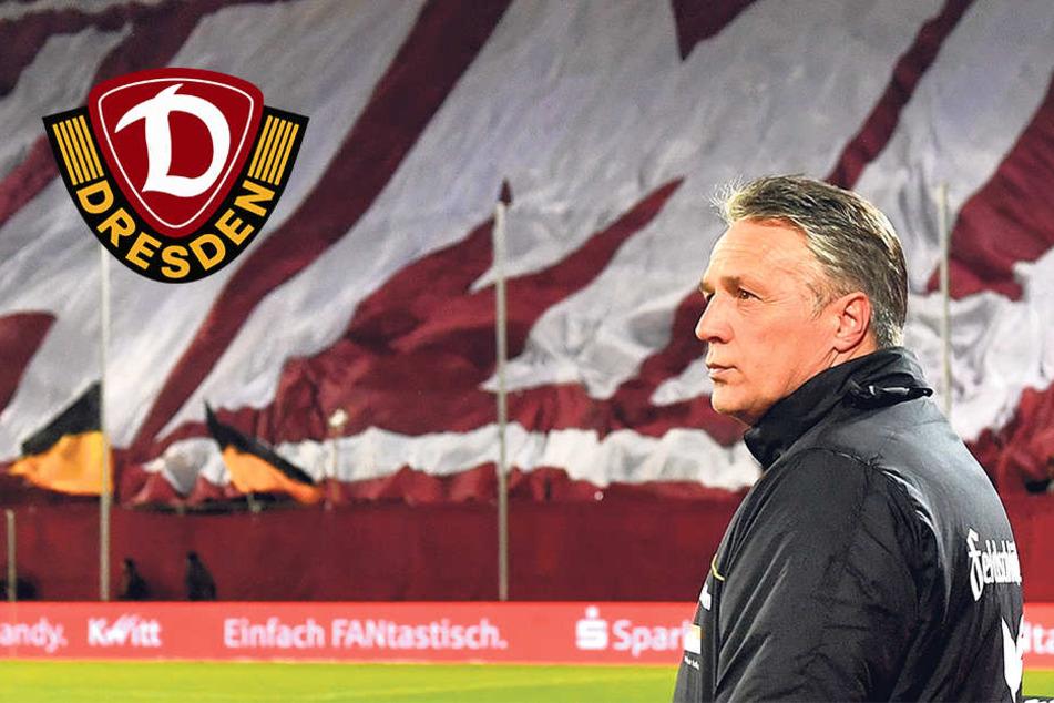 """Fazit und Ausblick bei Dynamo: """"Die eine oder andere Überraschung wird's vielleicht geben"""""""