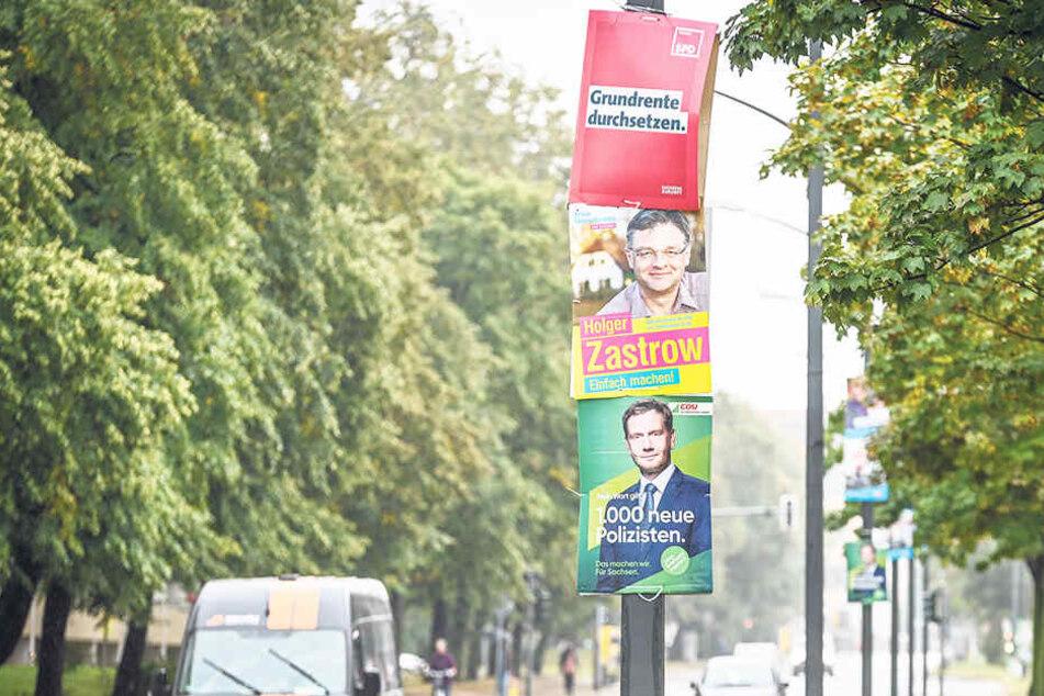 Ganz Dresden immer noch voller Wahlplakate! Jetzt wird's teuer für die Parteien