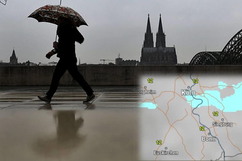 Den Schirm sollte man zurzeit nicht vergessen.