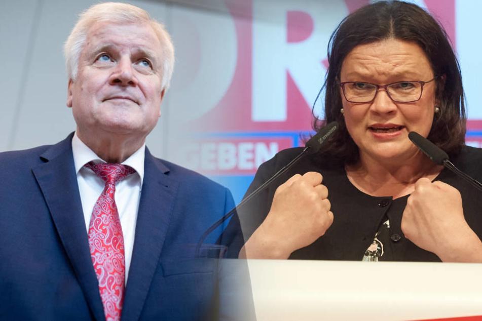 Seehofer würde dem Machtkampf mit der Kanzlerin alles unterordnen, sagte Nahles. Sie erwarte deshalb, dass die Regierungskoalition zerbricht.