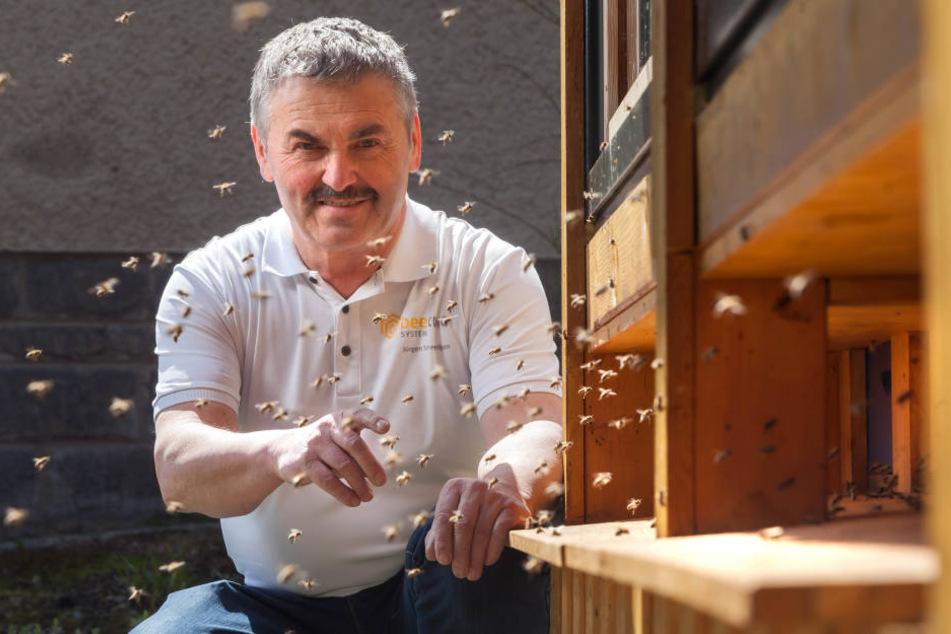 Ingenieur und Hobbyimker Jürgen Schmiedgen (64) nutzt die heilende Kraft der Bienen.