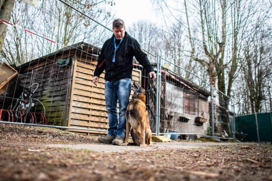 Der Diensthundeführer Jörg Siebert steht mit seinem Belgischen Schäferhund Artus auf dem Campingplatz Eichwald in Lügde.