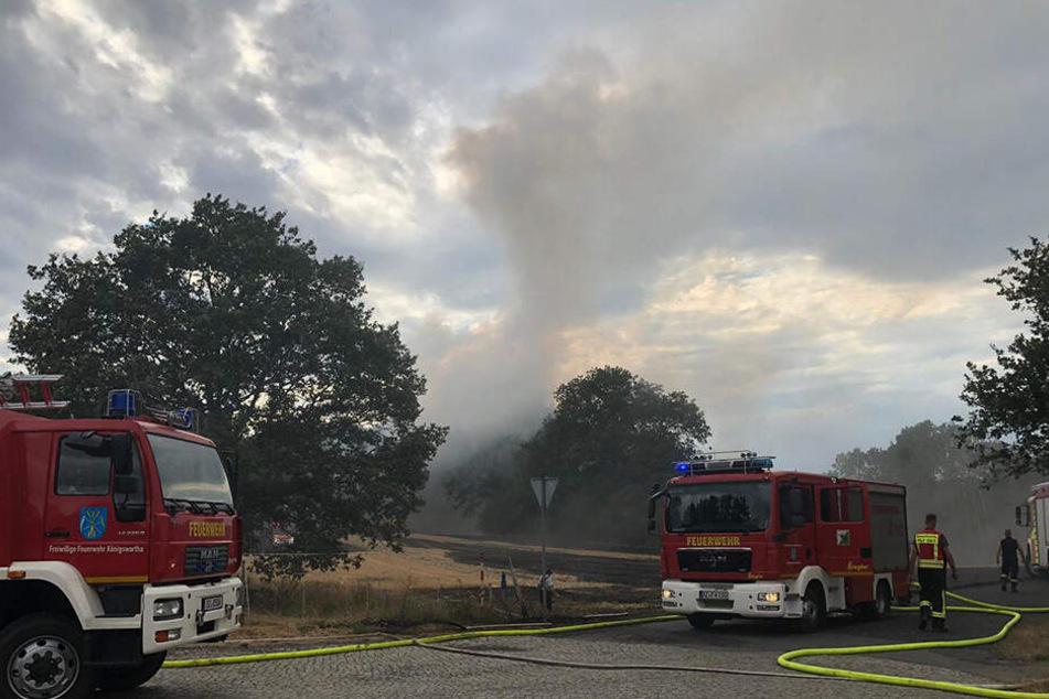 Etwa 30 Hektar Feld standen in Flammen.