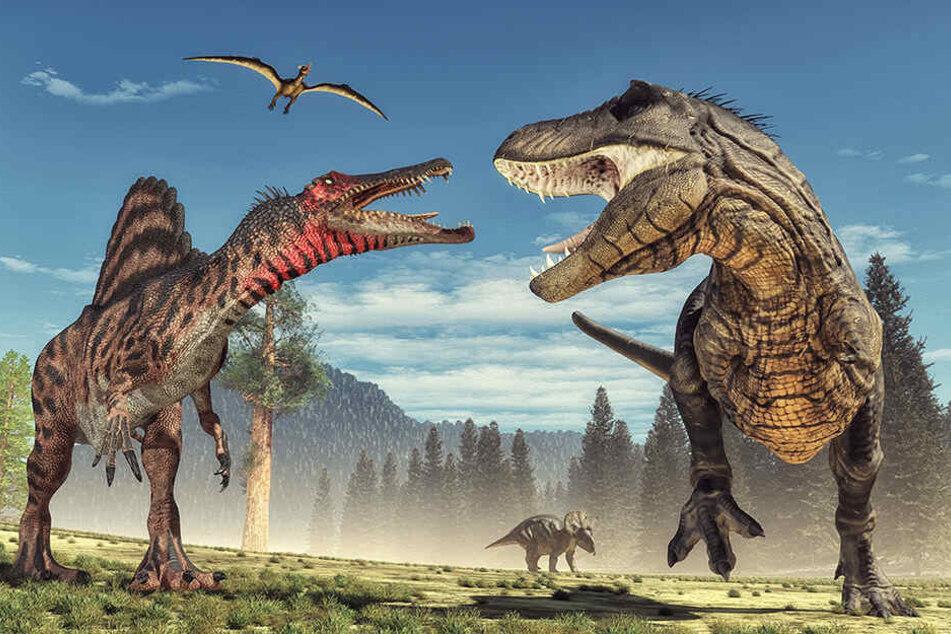 """Schon in wenigen Tagen bekommen Dino-Fans mit dem Kurzfilm """"Battle at Big Rock"""" cineastischen Nachschub. (Symbolbild)"""