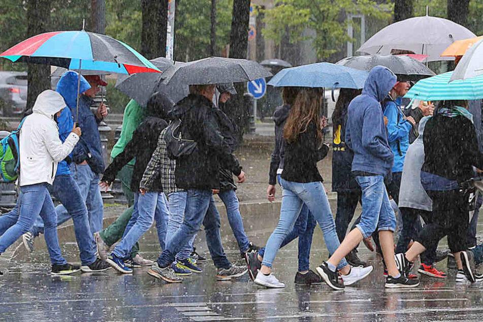 Regen ist in diesem Sommer leider ein ewiger Begleiter. Auch die nächsten Tage.