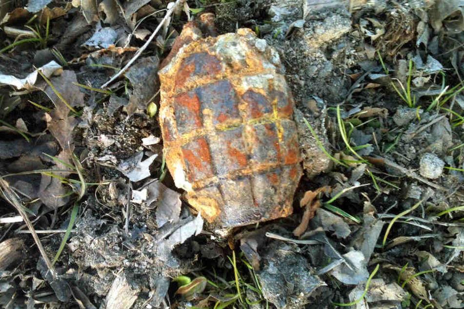 Bei den Aufräumarbeiten wurden etliche Granaten und weitere Munition gefunden. (Symbolbild)