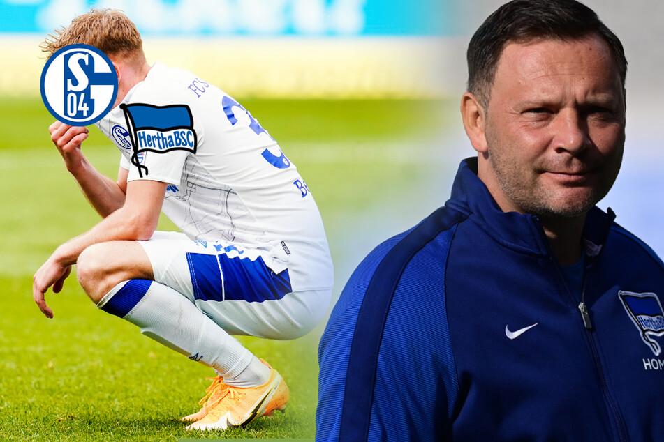 Corona-Chaos bei Schalke, aber Hertha-Spiel findet statt: Fans laufen Sturm!