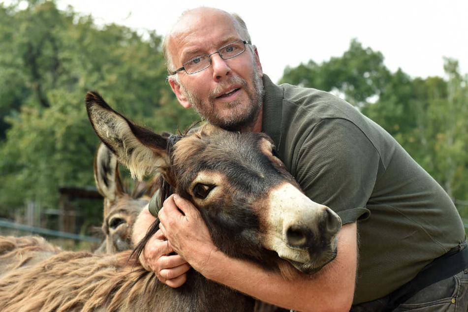 Für seine Esel sucht er schon ein neues Domizil: Der Meißner Tierparkchef Heiko Drechsler (57) will Ende des Jahres dichtmachen.