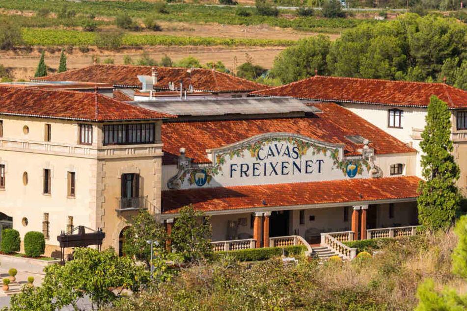 Der Unternehmenssitz von Freixenet im idyllischen Sant Sadurní d'Anoia.