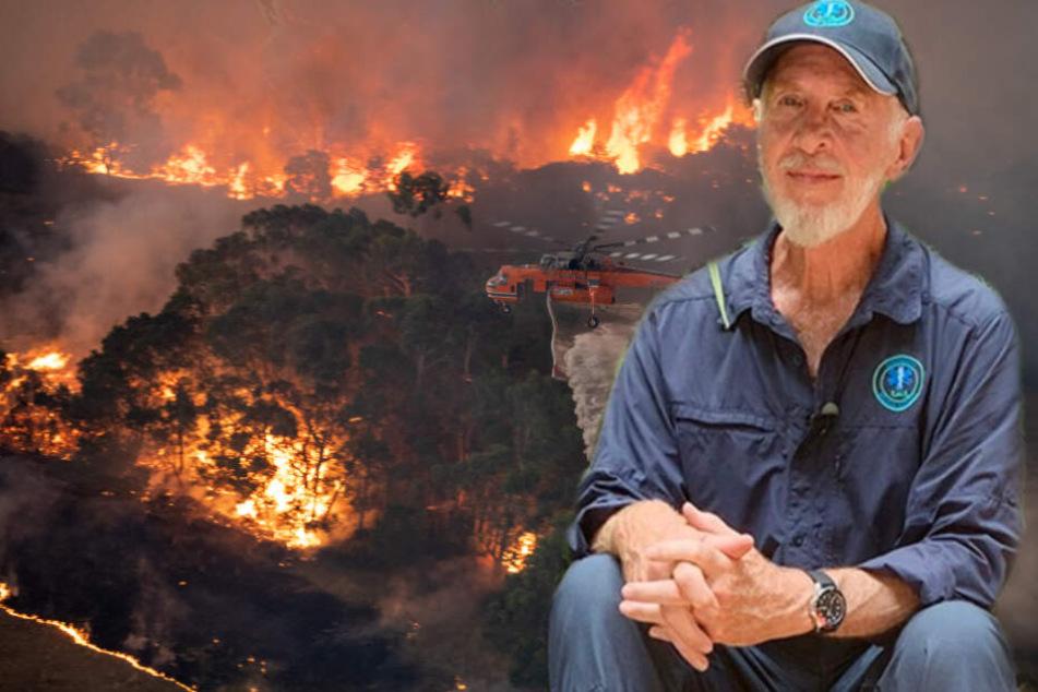 Dschungelcamp: Dr. Bob in großer Sorge: Buschfeuer bedrohen sein Haus
