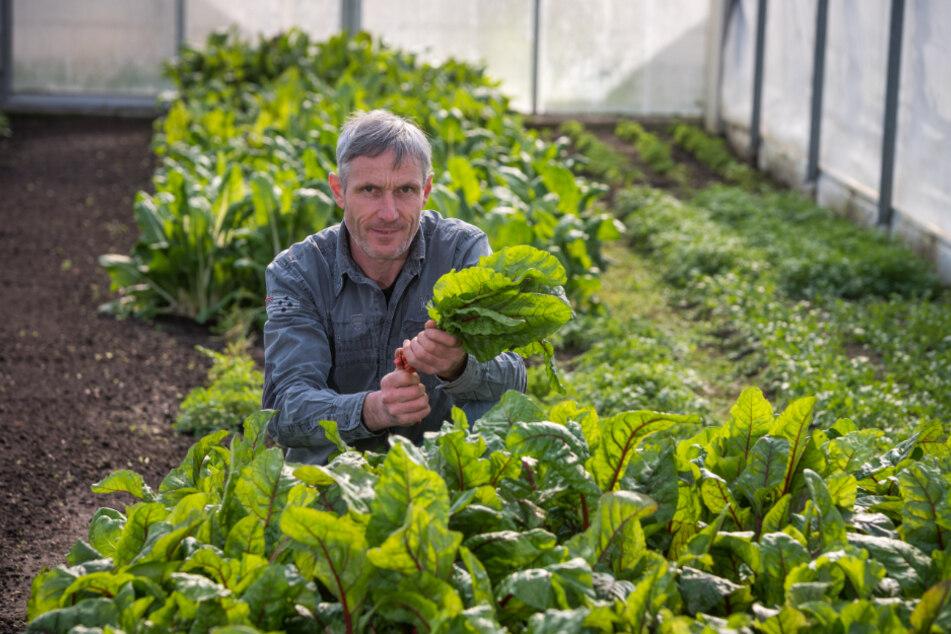 Gemüsehändler Ralf Naumann (51) bietet jetzt einen Lieferservice an.