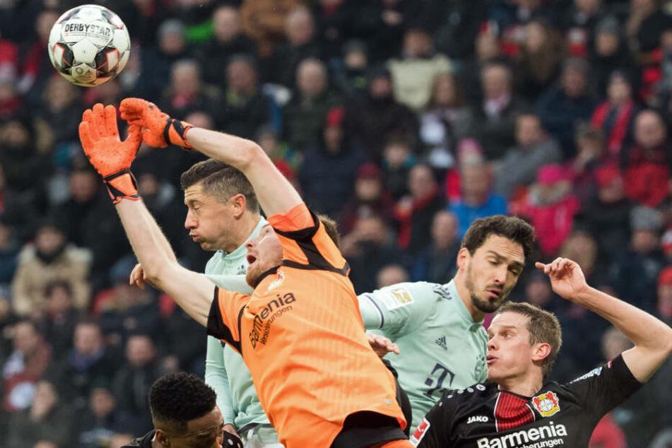 Lukas Hradecky und Robert Lewandowski kämpfen um den Ball.