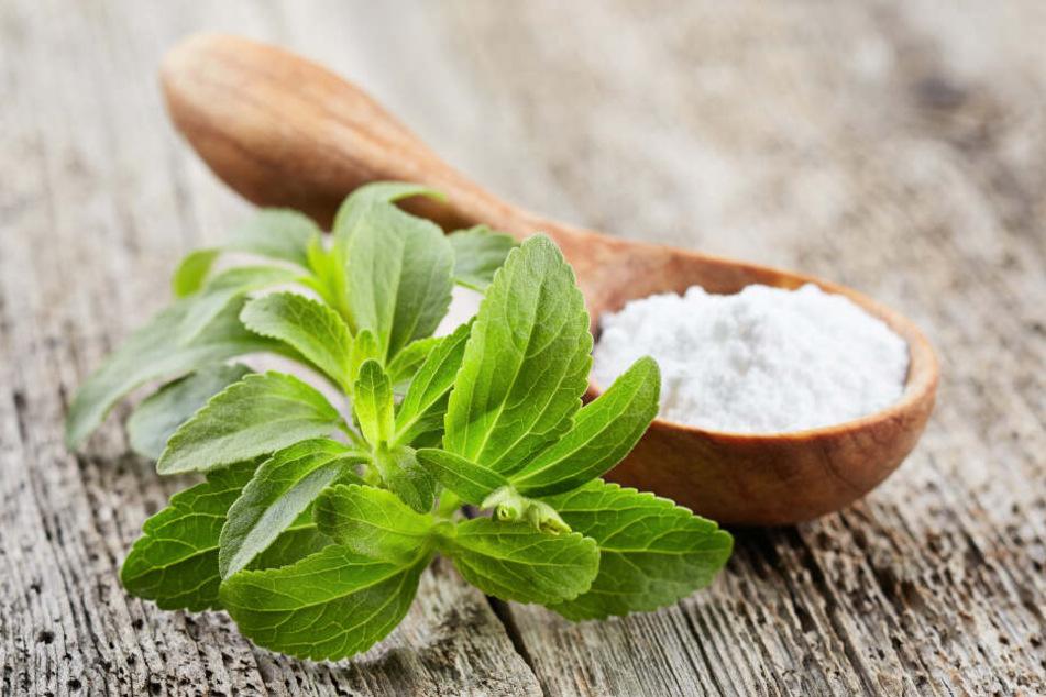 Stevia beeinflusst den Blutzuckerspiegel nicht und ist daher für Diabetiker von Interesse.
