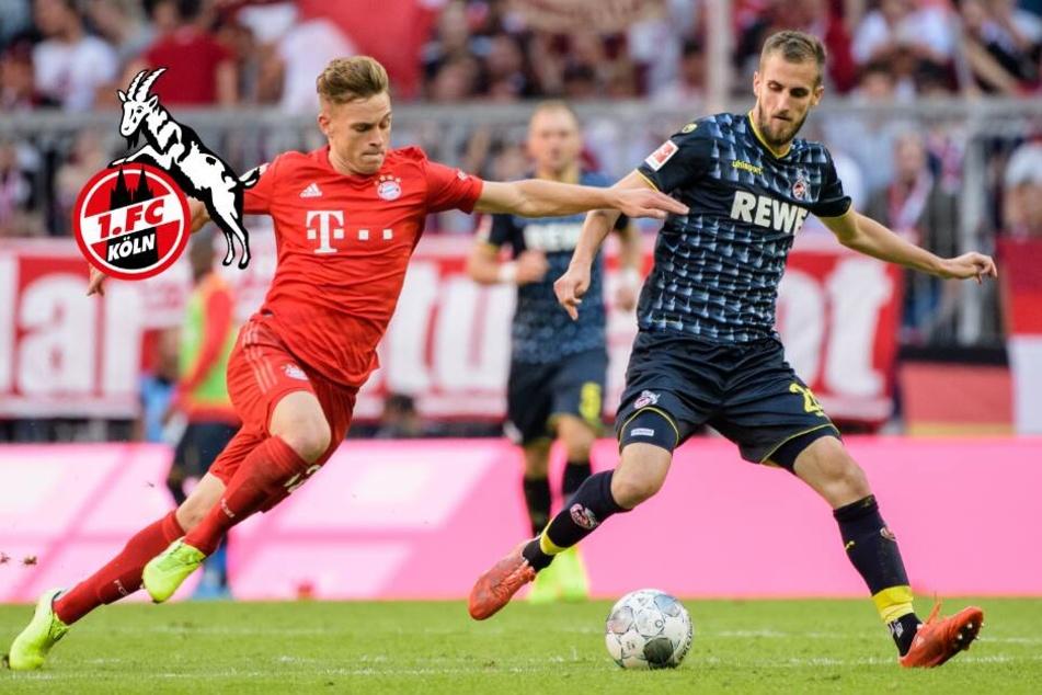 Köln trifft auf Angstgegner Paderborn: Einsatz von zwei Spielern auf der Kippe