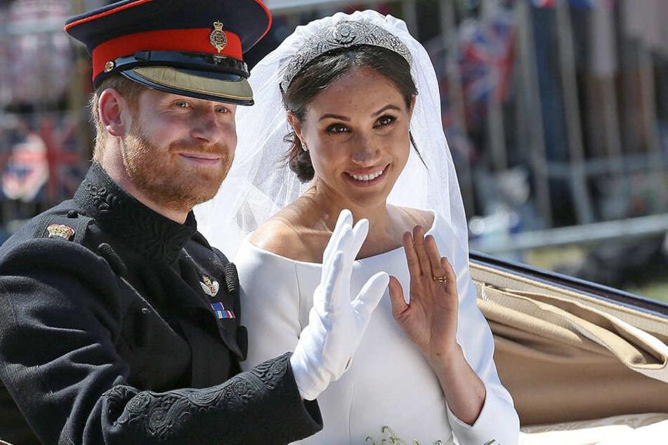 Da hast sich Harry anscheinend kein zahmes Kätzchen ausgesucht - doch er hält fest an der Ehe zu Meghan.
