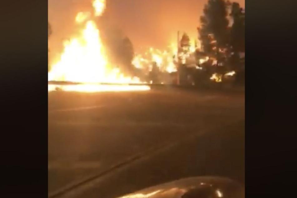 Frau filmt Fahrt durch die Flammen! Krasses Video aus der Feuer-Hölle in Kalifornien