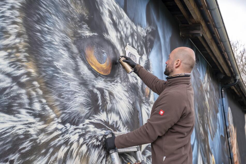 Graffiti-Künstler Nico Roth (36) vollendet kurz vor der Wiedereröffnung der Falknerei ein neues Riesenwandbild.