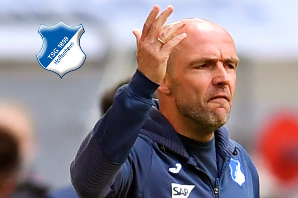 Paukenschlag bei der TSG Hoffenheim! Vertrag von Trainer Alfred Schreuder aufgelöst