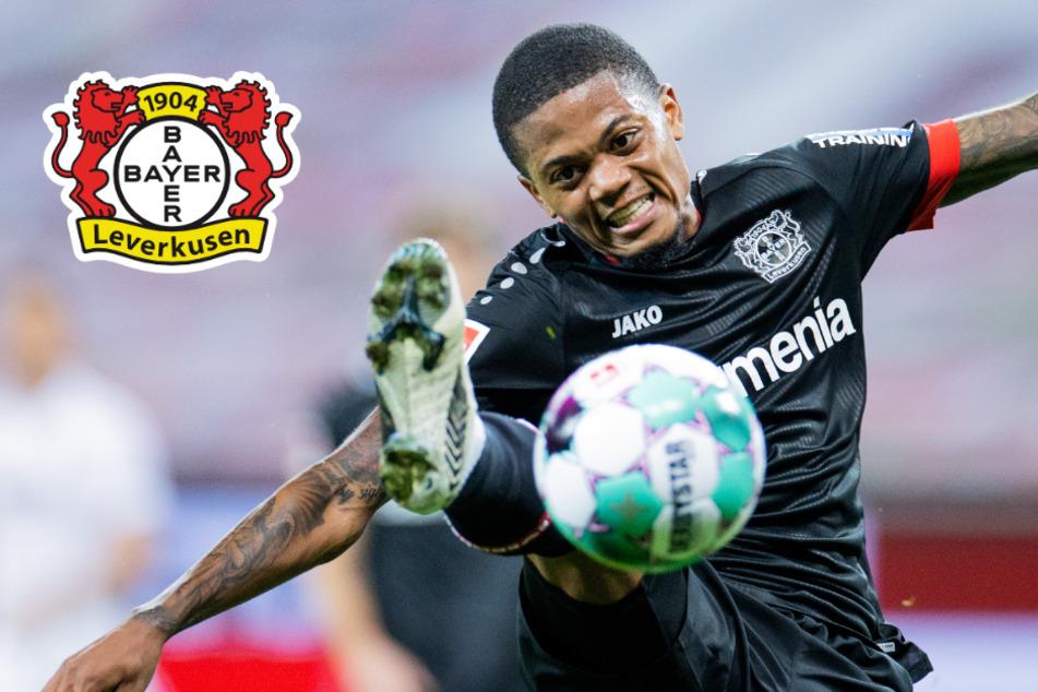 Nach Corona-Ausfall: Leverkusens Bailey wird zum Joker und sahnt Sonderlob ab
