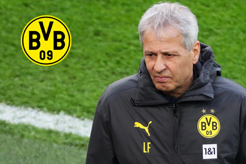 Wie geht's für Lucien Favre beim BVB weiter? Offenbar stehen Vertragsgespräche an