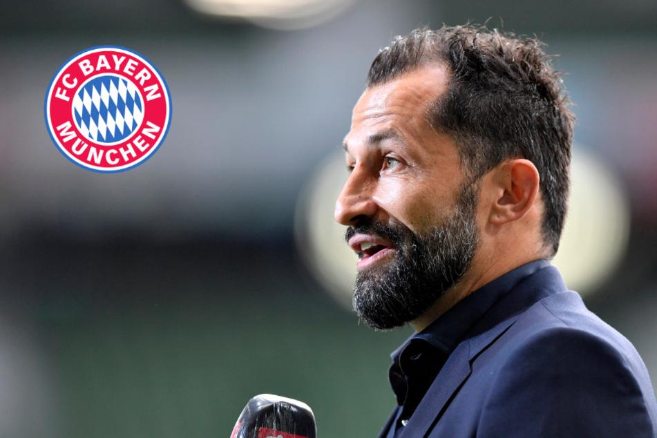 FC Bayern und die Alaba-Zockerei: Salihamidzic mit klarer Ansage in Richtung Spieler und Berater