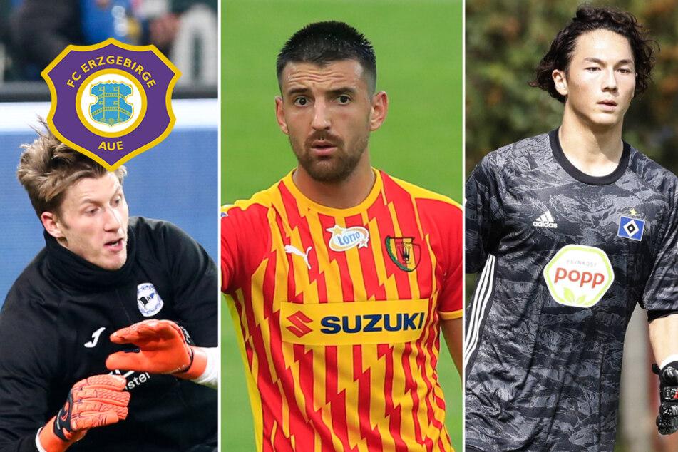 FC Erzgebirge Aue: Klewin und Gnjatic sind da! Harr probt