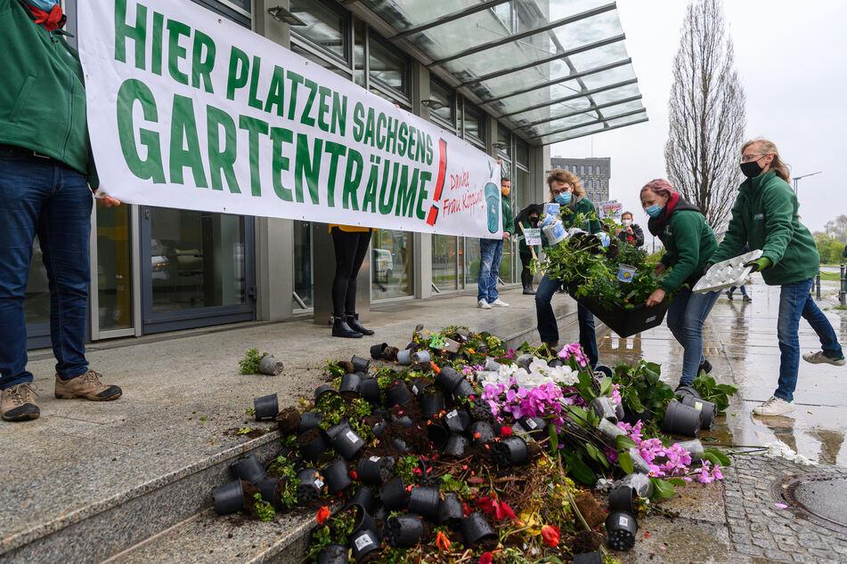 Mitarbeiter eines Gartencenters werfen Blumen und Kompost vor dem Sozialministerium in Dresden ab.