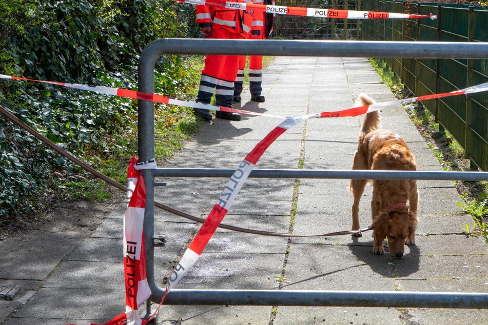 Rätselhafte Blutlache: Rettungshund verfolgt Spur durch Wohngebiet